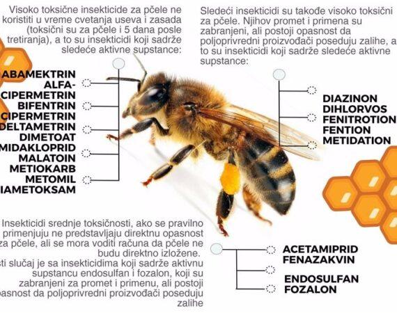 Kako bi izgledao svet bez pčela?