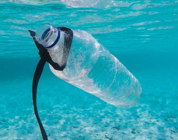 Vreme je za dijetu bez plastike: Plastika i skrivene opasnosti po zdravlje #PlasticDiet